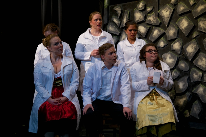 Lyndsey Paterson, Mikee Ames, Michelle Hoppe, Christopher Mavin, Nina Garcia and Mollie-Risa Chapin in Young Frankenstein